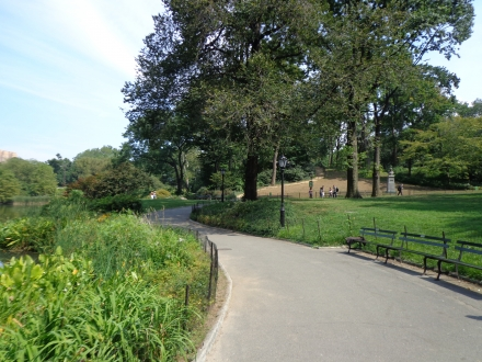 Well-maintained trails with benches in Central Park