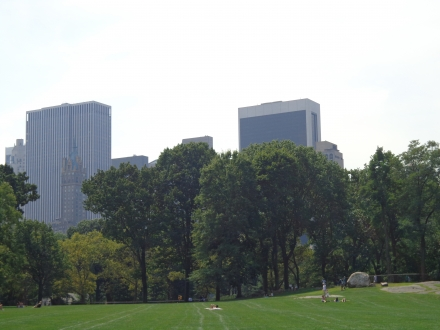 Skyscrapers peeking through the trees of Central Park